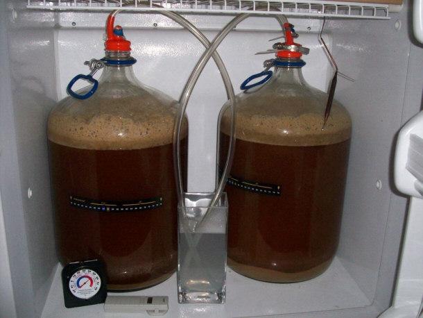 Как сварить пиво в домашних условиях без