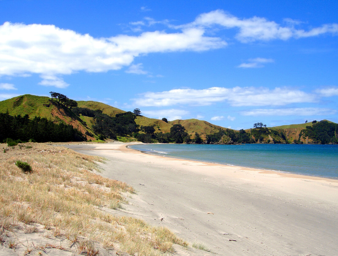 Great Barrier Island New Zealand  city photos : Great Barrier Island New Zealand