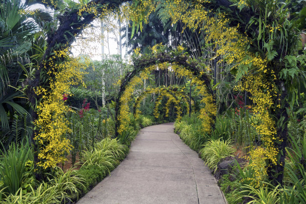 Top 15 interesting places to visit in singapore for Au jardin singapore botanic gardens